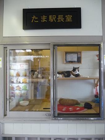 090828-貴志駅とたま駅長 (1)