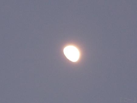 110513-お月さん (1)