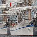 横浜港の日本丸II世と海王丸II世