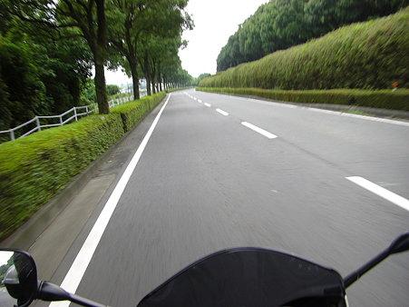 帰りの県道