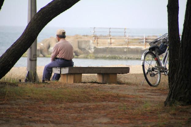 Photos: 合浦公園・海を眺める人02-12.07.04