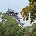 秋の広島城 天守閣