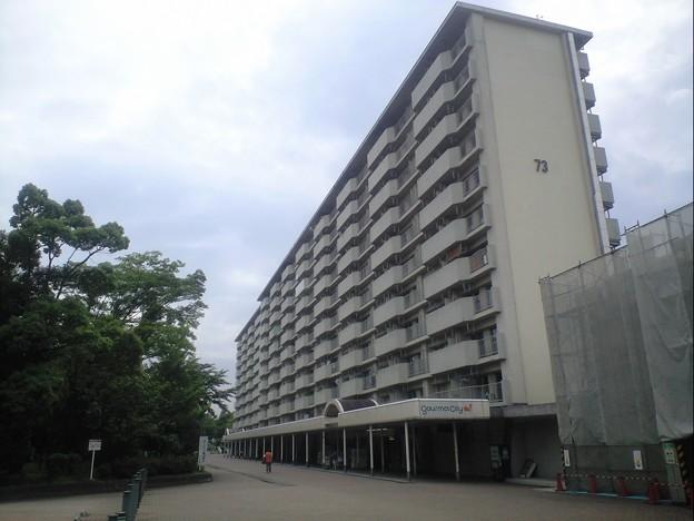 Photos: 高幡台団地 73号棟