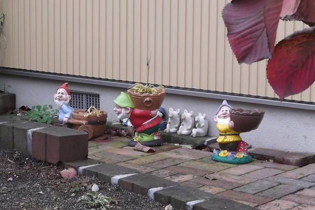 御近所の庭