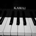 Photos: Toy Piano