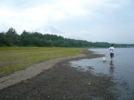 山中湖から見る富士