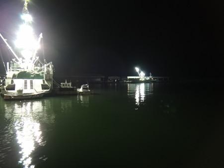 港内の様子 (1)