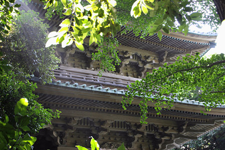 2009.06.20 江ノ電 滝口寺 五重塔