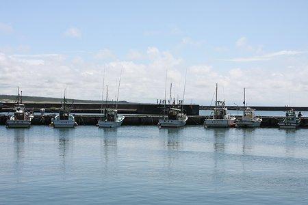 2009.08.14 山形 漁港の夏