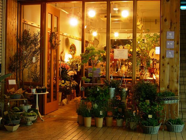 カメラよ、これが街の灯だ:2008_0420_fpxF710_DSCF0966