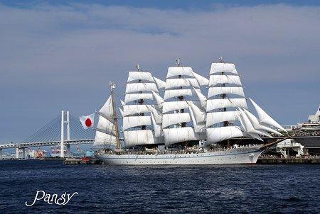 海の日の帆船・・