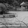 Photos: 舟・・