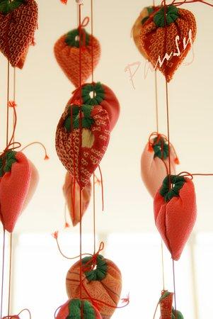 柿。。ハーブ館にて・・