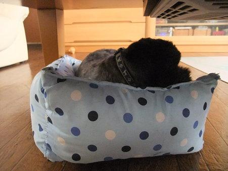 ベッドが好きです♪