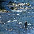 写真: 久慈川で鮎を釣る釣り人