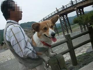 2009_0516錦帯橋に行く0037