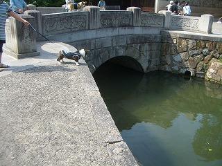 2009_0607錦帯橋及び港公園及び0110