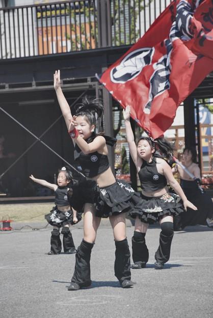 雷舞・G小虎・懸命に踊る-3-060