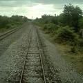 Photos: 【タイ】ひまわり列車|Sunflower Train 2008 [13]|線路の向かう先は