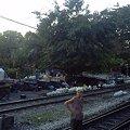 Photos: 【タイ】ひまわり列車|Sunflower Train 2008 [03]|バンコク近郊