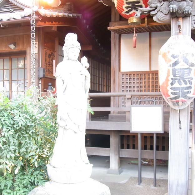 【東京|神社仏閣】 大円寺 (33)