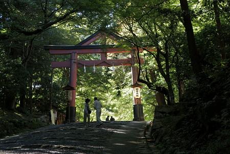 日吉大社-鳥居の向こうは別世界