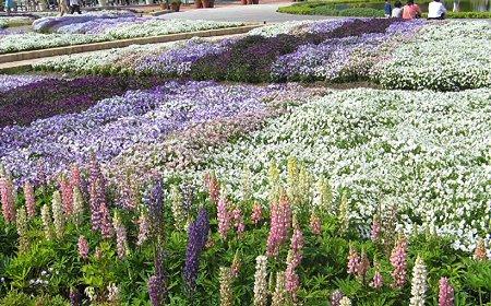 flowerpark konan-210525-8