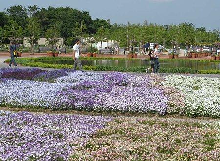 flowerpark konan-210525-5