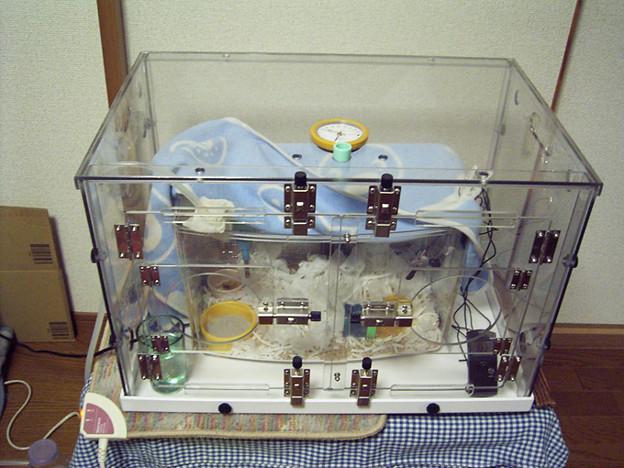 酸素室全景