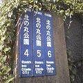 北の丸公園4・5・6