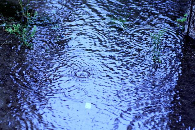 梅雨前線停滞中