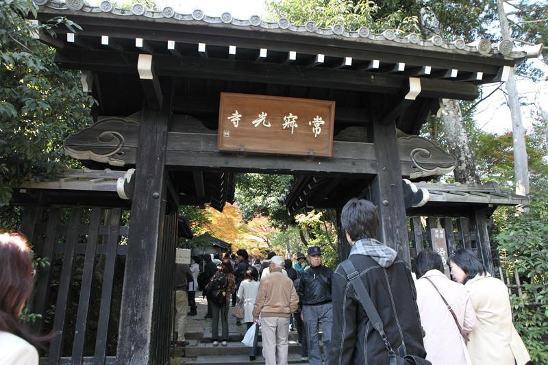 IMG_9803京都の紅葉_2010年11月