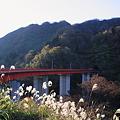 Photos: 梨谷大橋