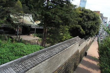 湯島聖堂の道