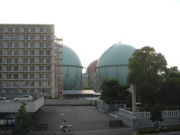 隅田川堤防からガスタンクを望む。 ん? あの赤いの・・ DSC01599
