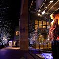 keyakizaka II ・・・ 2010 Christmas of Tokyo IIXVI