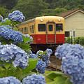 写真: 小湊鉄道 06