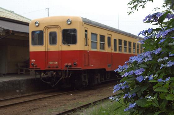 写真: 小湊鉄道 11