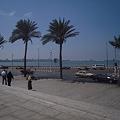 Photos: アレキサンドリア 図書館前の海